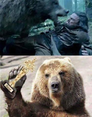 oso-oscar