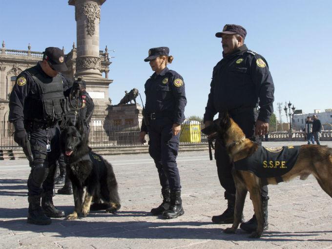 4 policiaco