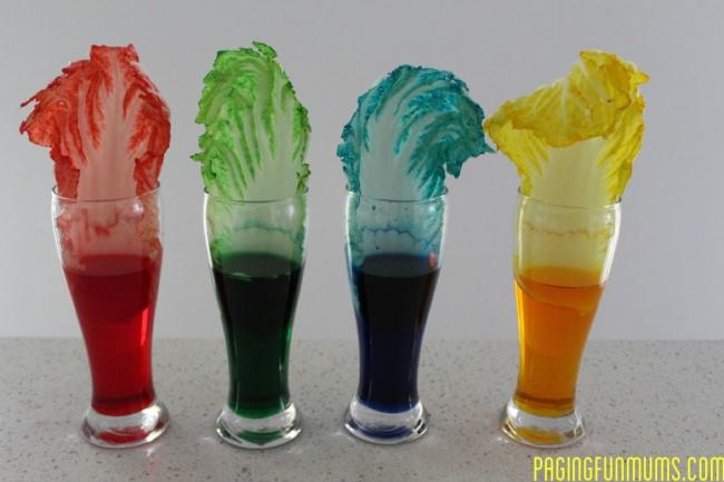 Col de colores