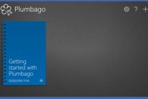 plumbago-300x224
