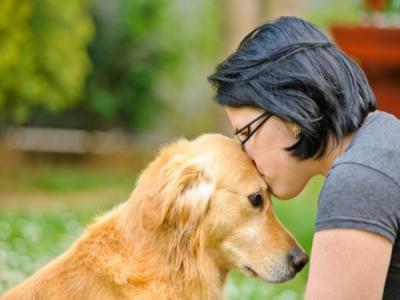 oxitocina-perros
