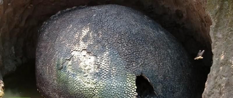 huevo1