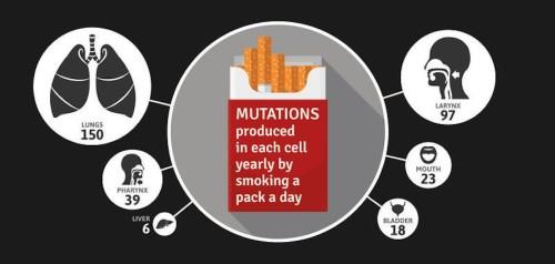 mutaciones-cajetilla-adn-cigarros